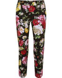 Dolce & Gabbana - Floral-print Stretch-cotton Straight-leg Trousers - Lyst