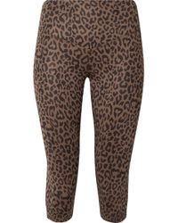 Olympia - Matteo Cropped Leopard-print Stretch-jersey Leggings - Lyst