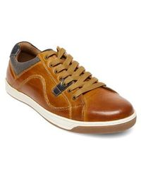 Steve Madden - Chater Low Top Sneaker - Lyst