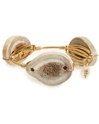 Bourbon and Boweties - Deer Antler Bracelet - Lyst