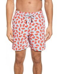 Tom & Teddy - Watermelon Print Swim Trunks - Lyst