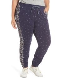 Lucky Brand - Floral Joggers - Lyst