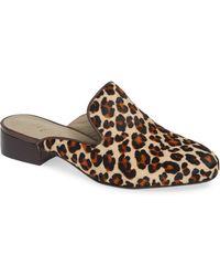 Matisse - Lacy Genuine Calf Hair Mule - Lyst