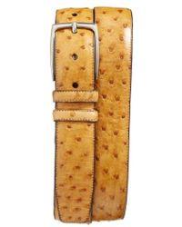 Mezlan   Ostrich Leather Belt   Lyst