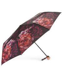 Ted Baker - Splendour Compact Umbrella - - Lyst