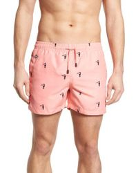 Nikben - Slim Fit Toucan Swim Trunks - Lyst
