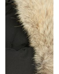 d93390b4bd4 Canada Goose - Down Fill Aviator Hat With Genuine Coyote Fur Trim - Lyst