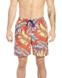 Tommy Bahama - Naples Parque Palms Swim Trunks - Lyst
