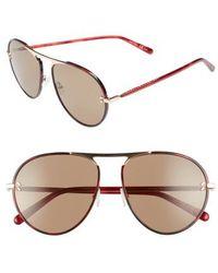 Stella McCartney - 58mm Aviator Sunglasses - Burgundy Havana - Lyst