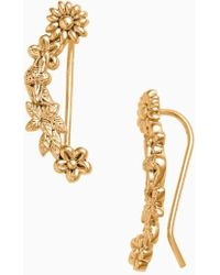 Olivia Burton - Bee Blooms Crawler Earrings - Lyst