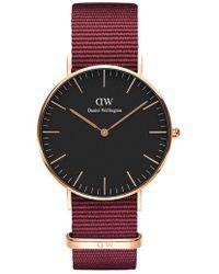 Daniel Wellington - Classic Roselyn Nylon Strap Watch - Lyst