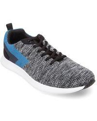 Steve Madden - Barrett Knit Sneaker - Lyst