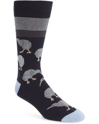 Calibrate - Kiwi Birds Socks - Lyst