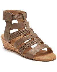 Rockport Calia Gladiator Sandal - Wide Width Available - Brown