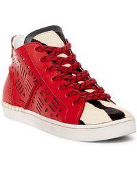Dolce Vita | Zeus Sneaker | Lyst
