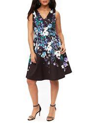 Wallis - Floral Burst Fit & Flare Dress - Lyst