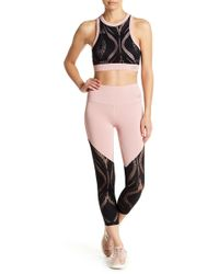 Bebe - Colorblock Lace Panel Cropped Leggings - Lyst