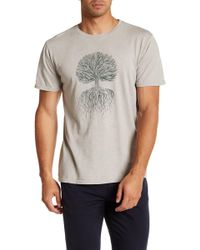 United By Blue - Tree Roots Tee - X-large - Lyst