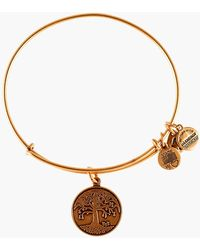 ALEX AND ANI - Tree Of Life Expandable Wire Bangle - Lyst