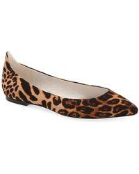 Bettye By Bettye Muller - 'pedigree' Pointy Toe Ballet Flat (women) - Lyst