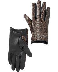 Vincent Pradier - Reptile Print Gloves - Lyst