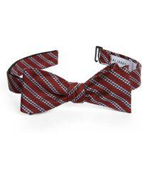 Calibrate - Stripe Silk Bow Tie - Lyst