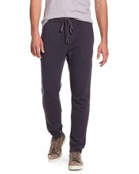 Velvet By Graham & Spencer - Jaspe Joggers - Lyst
