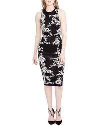RACHEL Rachel Roy | Hummingbird Jacquard Sweater Dress | Lyst