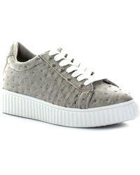 Seven7 - Brown Sneaker - Lyst