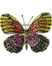 Oasis | Butterfly Brooch | Lyst