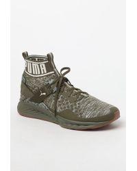 Lyst - PUMA Ignite Evoknit Hypernature Sneakers In Beige 19033702 in ... 3d5abd98b