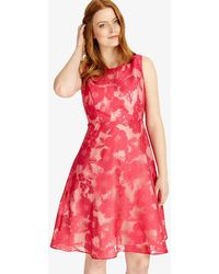Phase Eight - Ellen Dress - Lyst