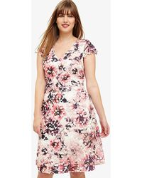 Phase Eight - Joselyn Printed Lace Dress - Lyst