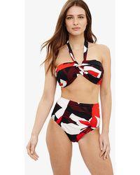 Phase Eight - Lana Floral Print Bikini Top - Lyst