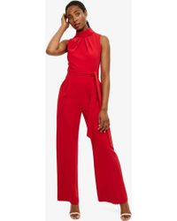 Phase Eight - Carmine Cressida Roll Neck Jumpsuit - Lyst