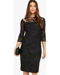Phase Eight - Isadora Lace Dress - Lyst