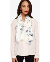 Phase Eight - Lilith Floral Scarf - Lyst