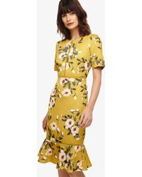 Phase Eight - Hilary Floral Dress - Lyst