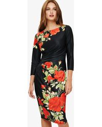 Phase Eight - Grace Rose Dress - Lyst