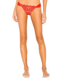 Pilyq - Lace Fanned Teeny Bottom - Lyst