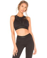 Strut-this - The Unstoppable Jade Sports Bra In Black - Lyst