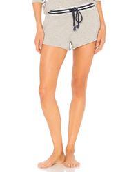 Splendid - Pajama Shorts - Lyst