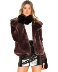 Jocelyn - Dyed Rex Rabbit Fur Cowl And Mitten Set In Black. - Lyst