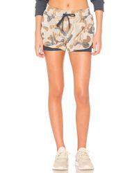 Koral | Sand Shorts | Lyst