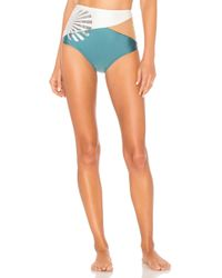 Agua de Coco - Shell Bikini Bottom In Blue - Lyst