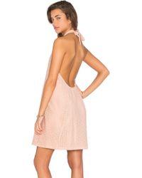 Chloe Oliver - Pretty In Pink Crepe Halterneck Dress - Lyst