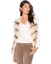 Heartloom - Sullivan Rabbit & Asiatic Raccoon Fur Vest - Lyst