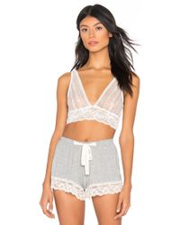 b969afcb6bf4a Lyst - Free People Evangelina Lace Bralette in Natural