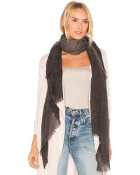 Michael Stars - Crinkled Ombre Scarf - Lyst
