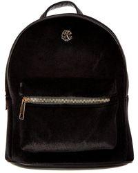 CXL by Christian Lacroix - Isabelle Mini Velvet Backpack - Lyst